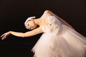 Swan_okuno